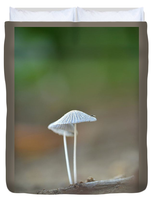Mushroom Duvet Cover featuring the photograph The Mushrooms by JD Grimes