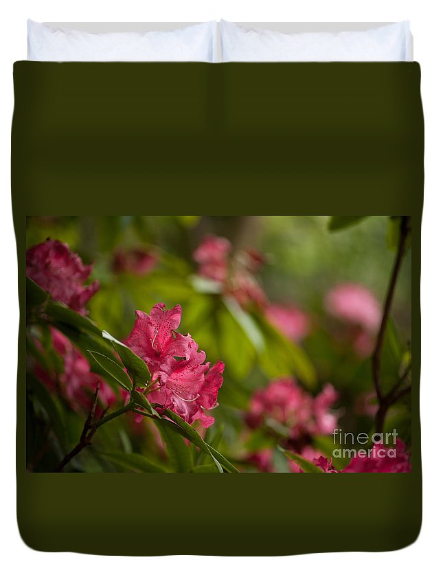 Rhodies Duvet Cover featuring the photograph The Observers by Mike Reid