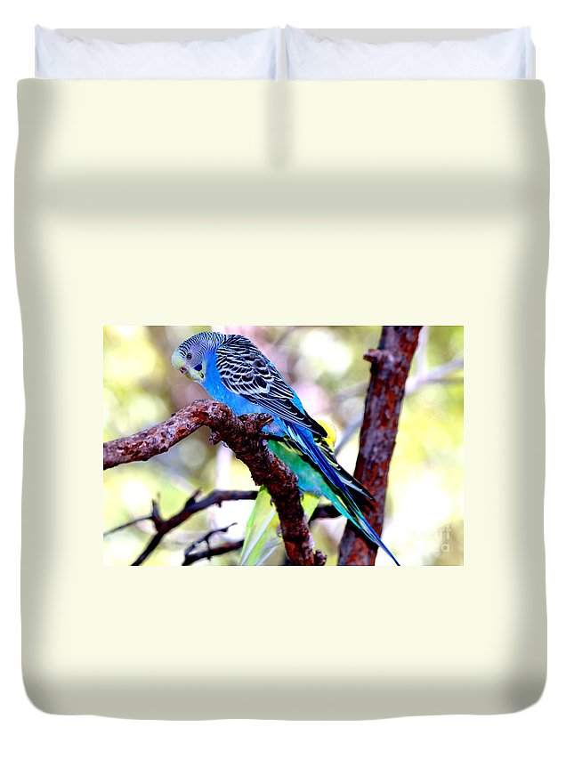 Budgerigar Parakeet Duvet Cover featuring the photograph The Parakeet by Kathy White