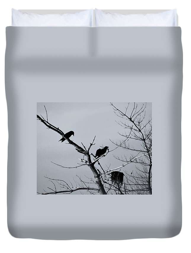 Ravens Duvet Cover featuring the photograph The Raven Tree by Susan Capuano