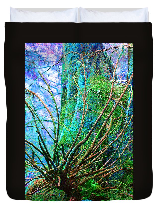 Trees Duvet Cover featuring the photograph The Reach by Marie Jamieson