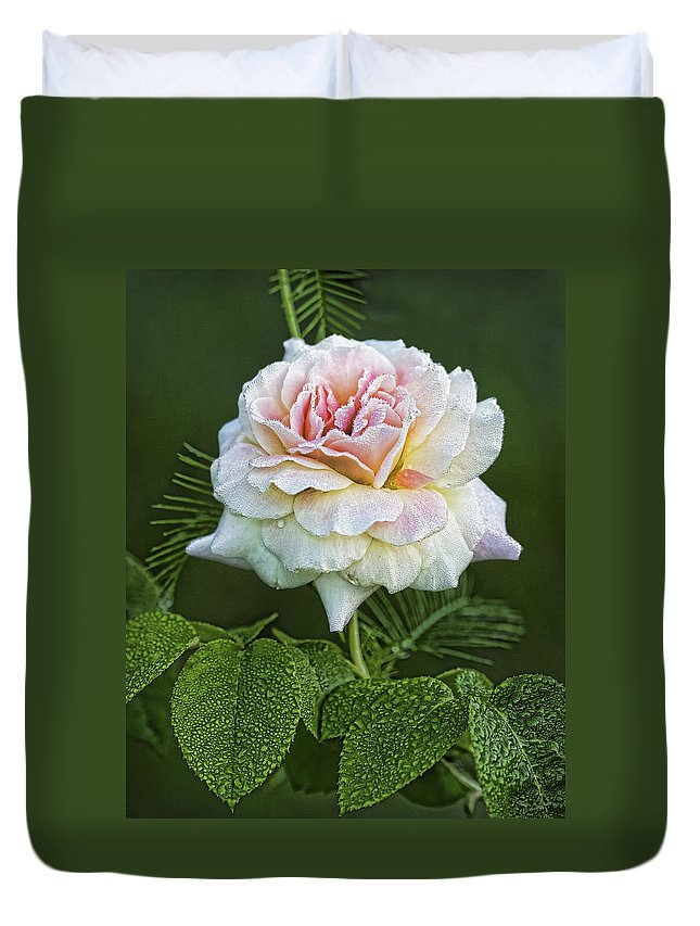 Rose Duvet Cover featuring the photograph The Splendor Of The Rose by Kathy Clark