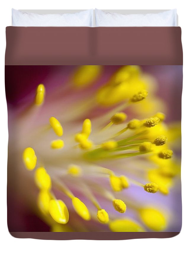 Stamen Duvet Cover featuring the photograph The Stamen Of A Flower by Craig Tuttle