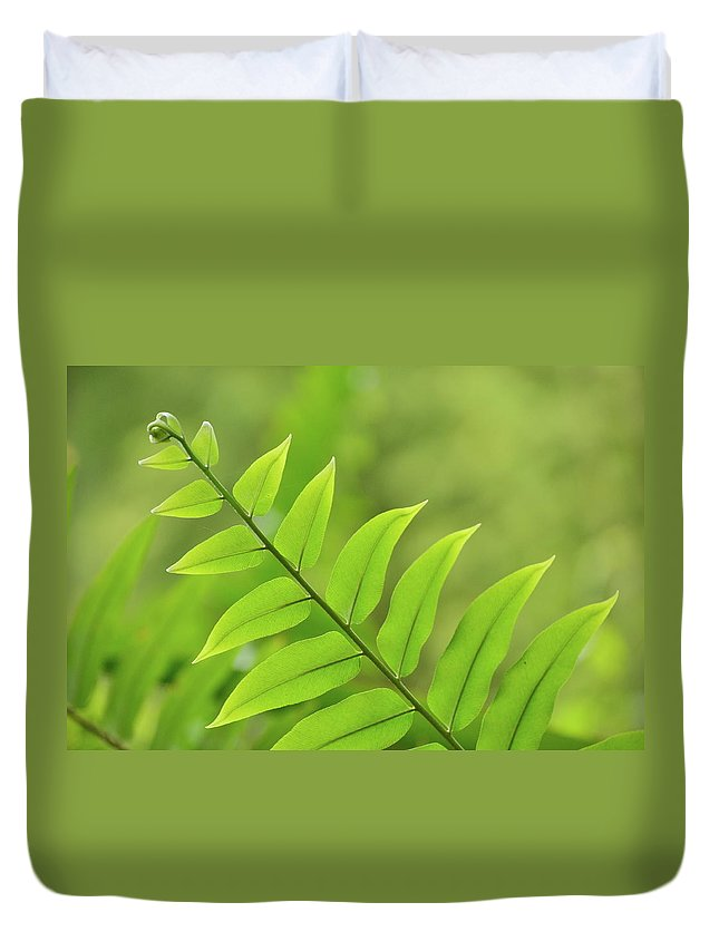 Fern Duvet Cover featuring the photograph The Tip Of A Fern by JD Grimes