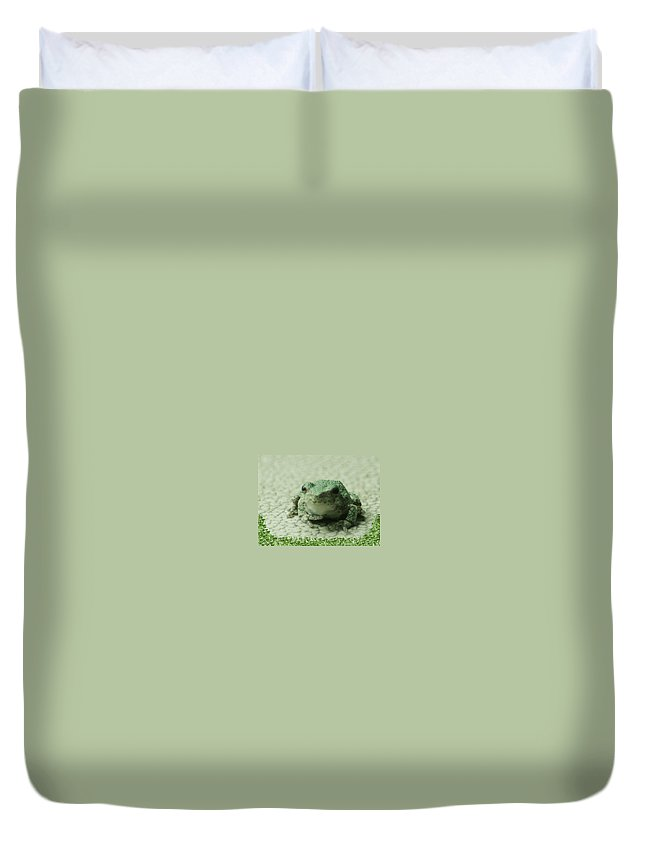 Photo Duvet Cover featuring the photograph The Tree Frog by Barbara S Nickerson