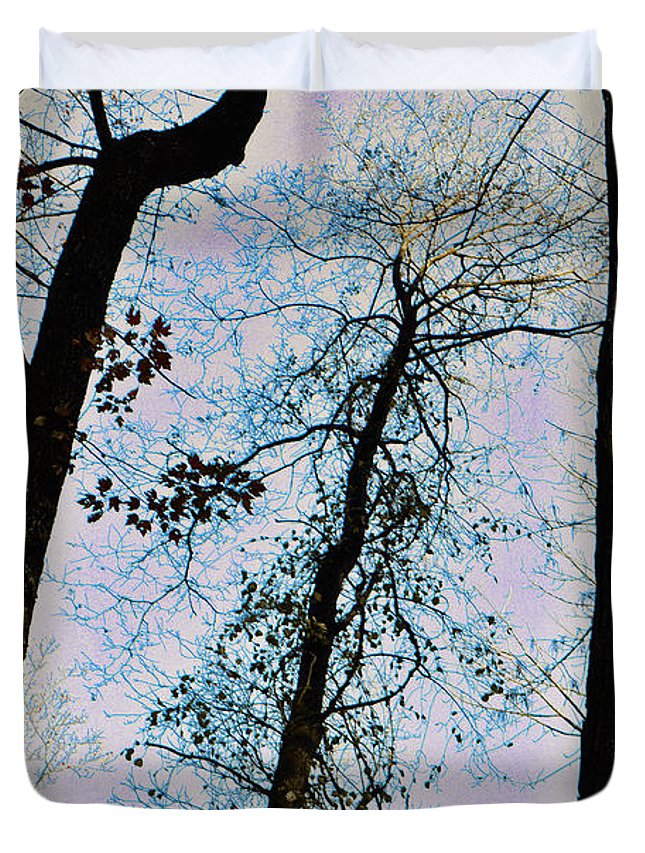 Trees Duvet Cover featuring the photograph Things Are Looking Up by Bill Cannon