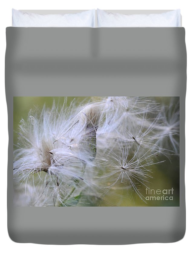 Thistle Seeds Duvet Cover featuring the photograph Thistle Seeds by Bob Christopher