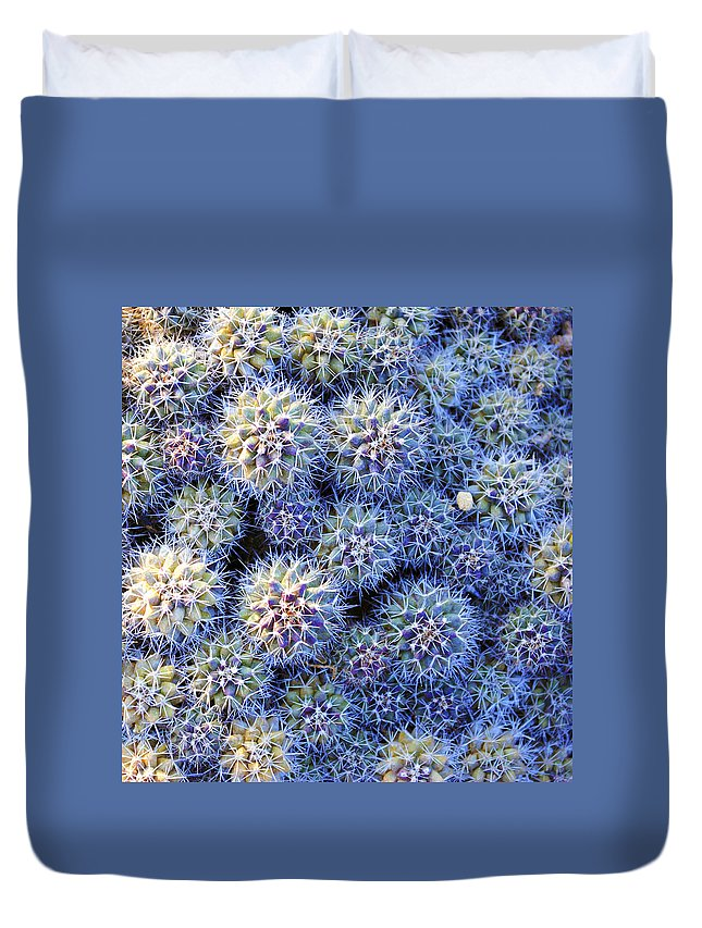 Thorns Duvet Cover featuring the photograph Thorns by Sumit Mehndiratta