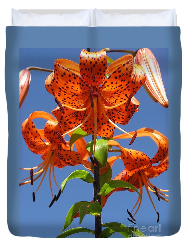 Flower Duvet Cover featuring the photograph Tiger Lily by Ausra Huntington nee Paulauskaite