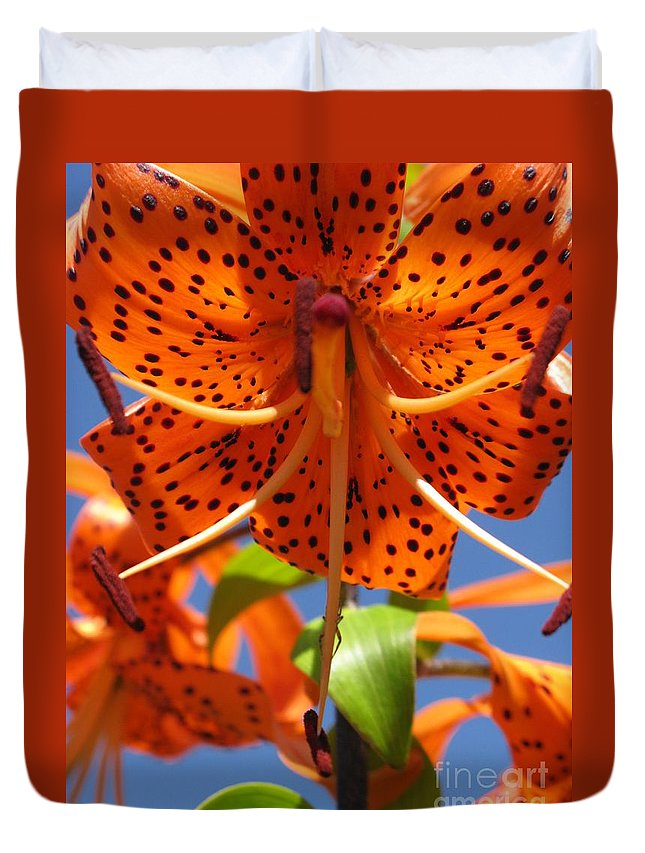 Flower Duvet Cover featuring the photograph Tiger Lily Close Up by Ausra Huntington nee Paulauskaite