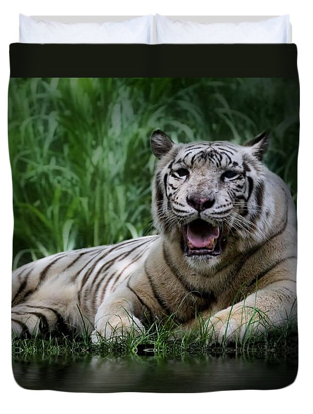 Tiger Duvet Cover featuring the photograph Tiger White by Kym Clarke