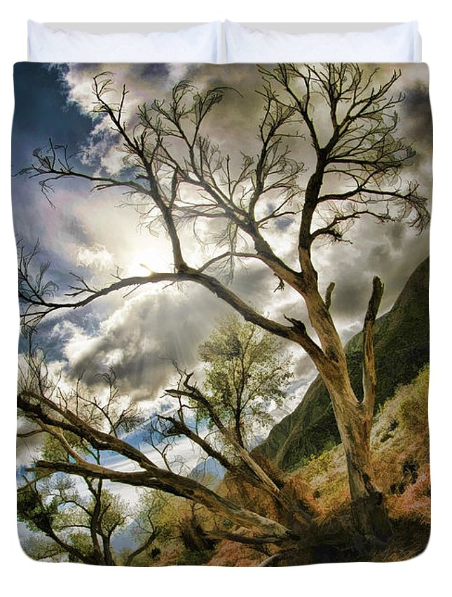 Fine Art Photographers Duvet Cover featuring the photograph Tilted Trees by Blake Richards