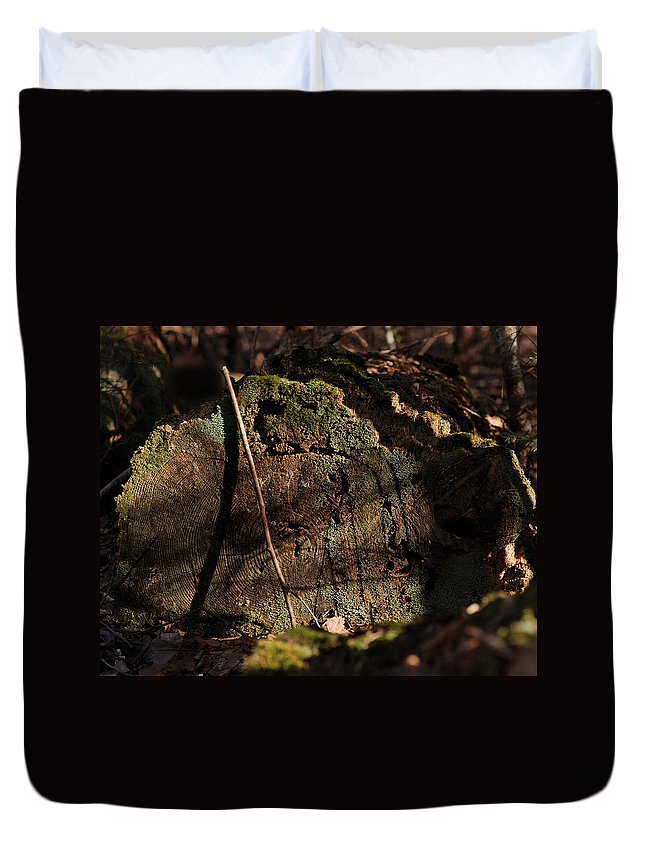 Log Duvet Cover featuring the photograph Time by Susan Capuano