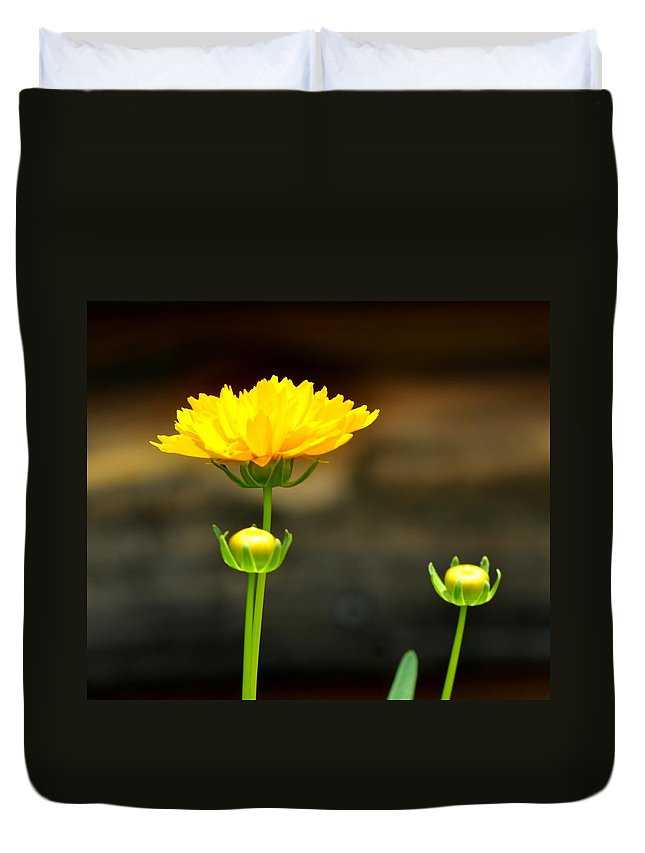 Flower Duvet Cover featuring the photograph Times Three by Maria Urso