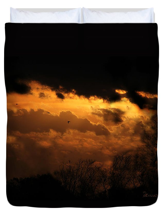 Sunset Duvet Cover featuring the photograph Tn Sunset Nov-11 by Ericamaxine Price