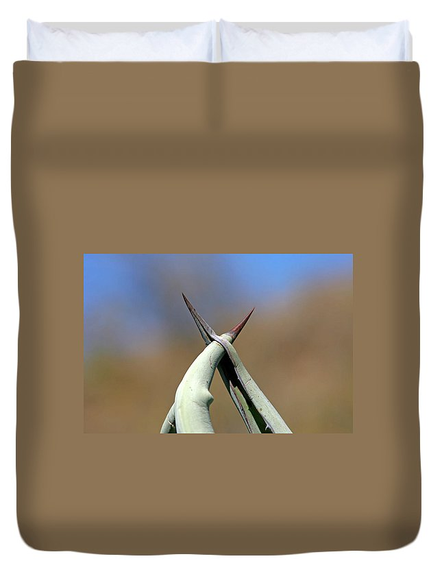 Agave Duvet Cover featuring the photograph Together by Ralf Kaiser