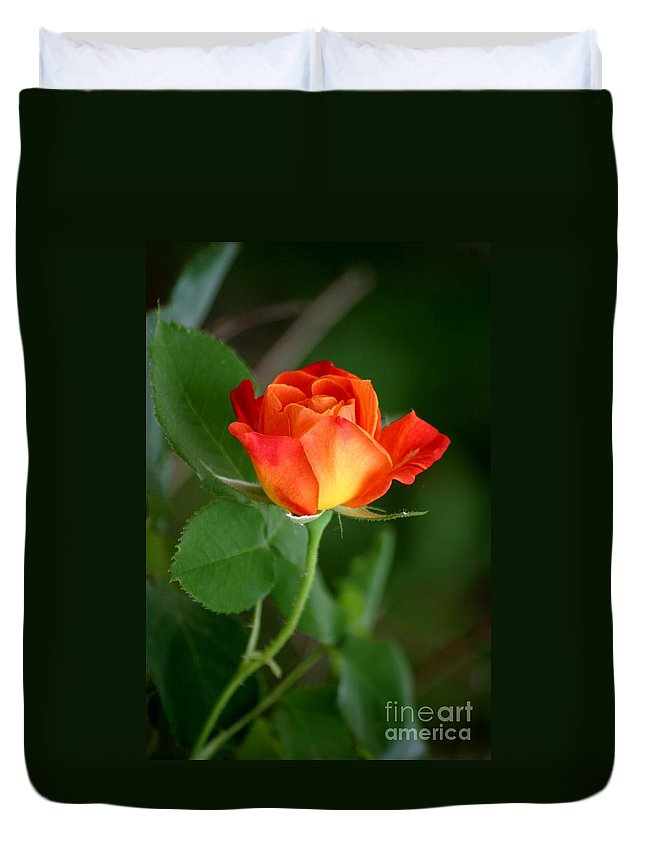 Roses Duvet Cover featuring the photograph Touch Of Summer by Living Color Photography Lorraine Lynch