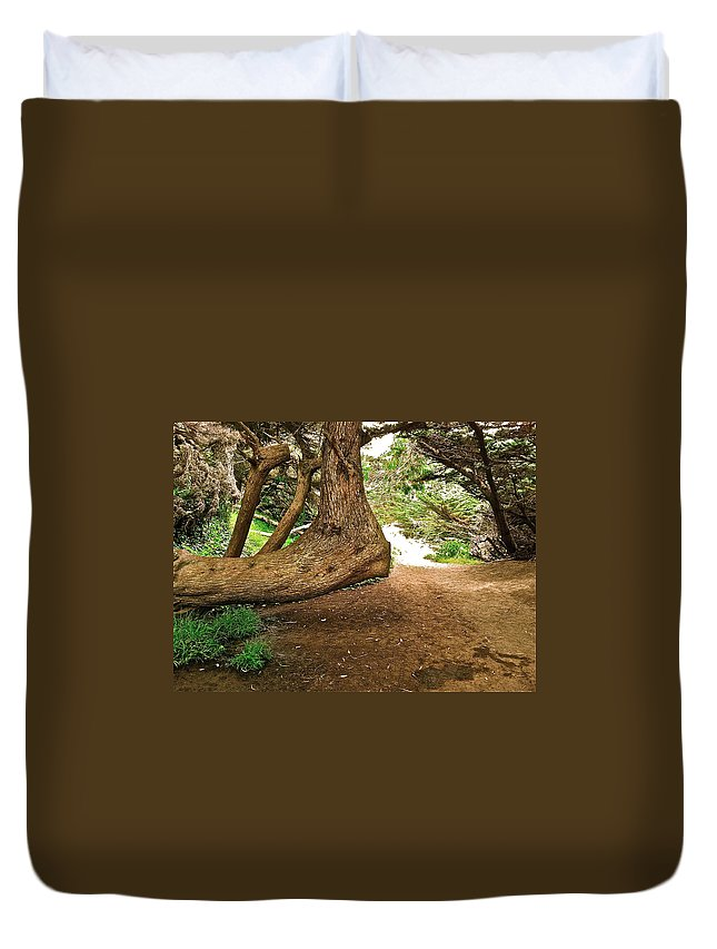 Tree Duvet Cover featuring the photograph Tree And Trail by Bill Owen