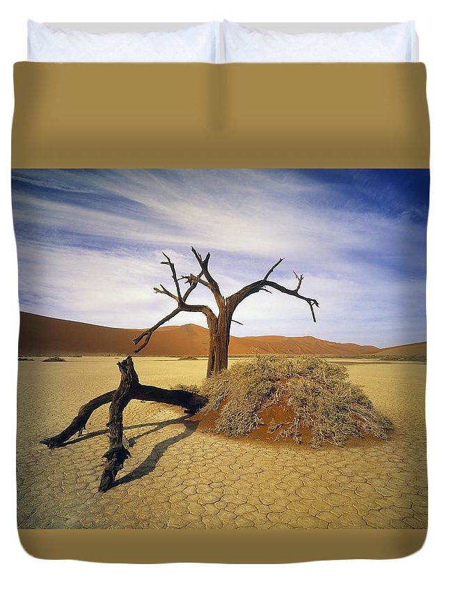 Light Duvet Cover featuring the photograph Tree In Desert by Darwin Wiggett