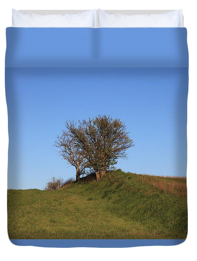 Tree Duvet Cover featuring the photograph Tree In The Country by Francesco Scali