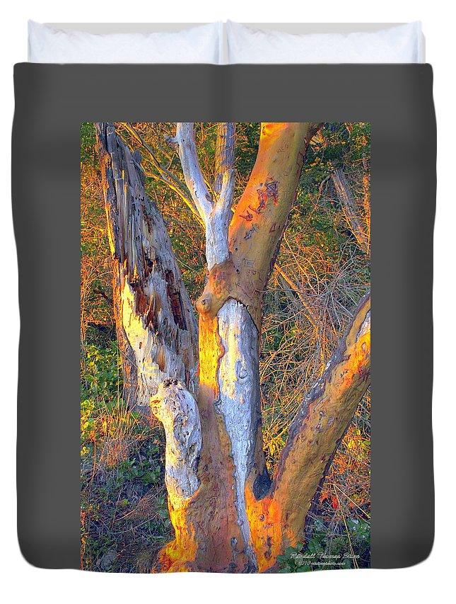 Sunset Duvet Cover featuring the photograph Tree In The Sunset by Randall Thomas Stone