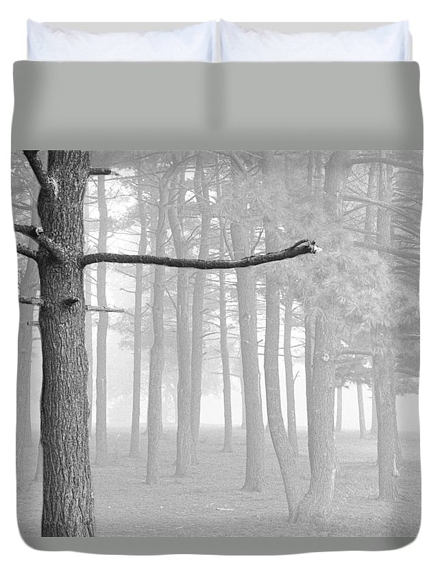 Art Duvet Cover featuring the photograph Trees On A Foggy Morning by Randall Nyhof