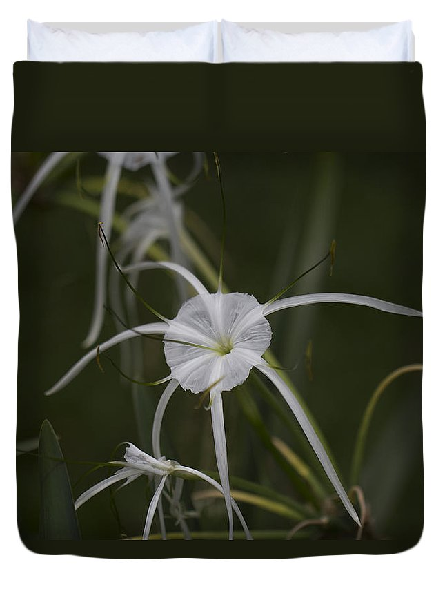 Flower Duvet Cover featuring the photograph Tropical White Spider Lily by Douglas Barnard