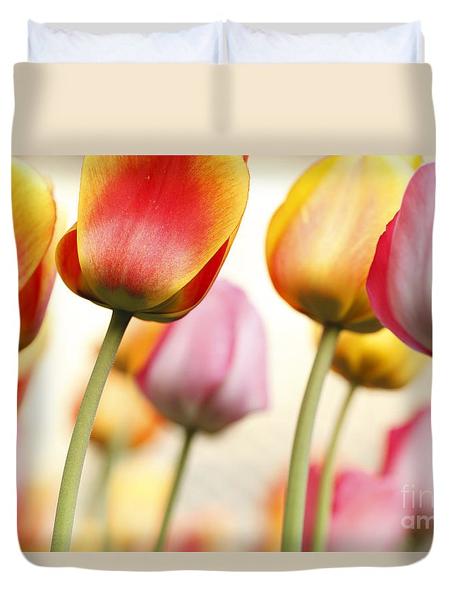 Tulip Duvet Cover featuring the photograph Tulip - Impressions 1 by Martin Williams