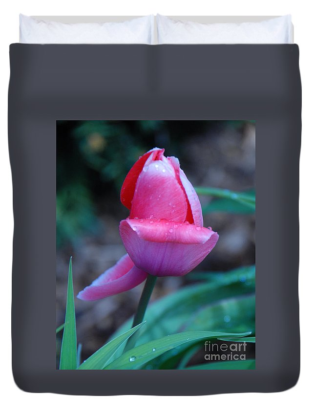 Tulip Duvet Cover featuring the photograph Tulip After The Rain by Grace Grogan