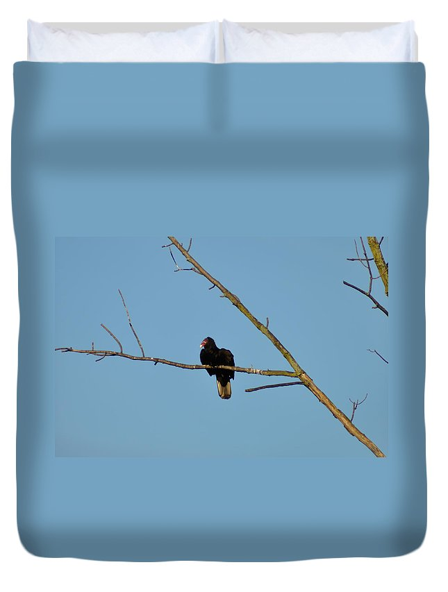 Turkey Vulture Duvet Cover featuring the photograph Turkey Vulture by Bill Cannon