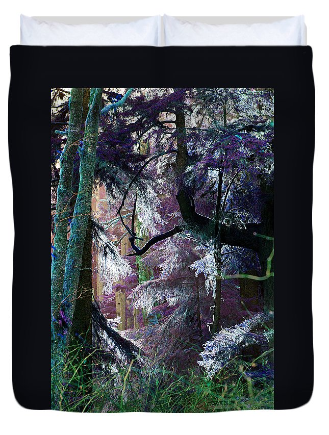 Misty Forest Framed Print Duvet Cover featuring the photograph Twilight In My Eyes by Marie Jamieson
