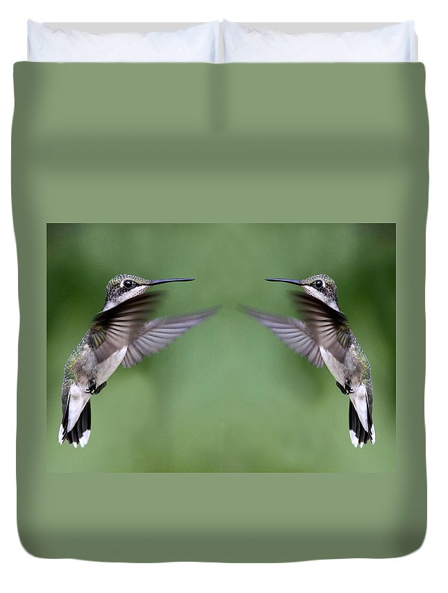 Birds Duvet Cover featuring the photograph Twins For Sure by Travis Truelove