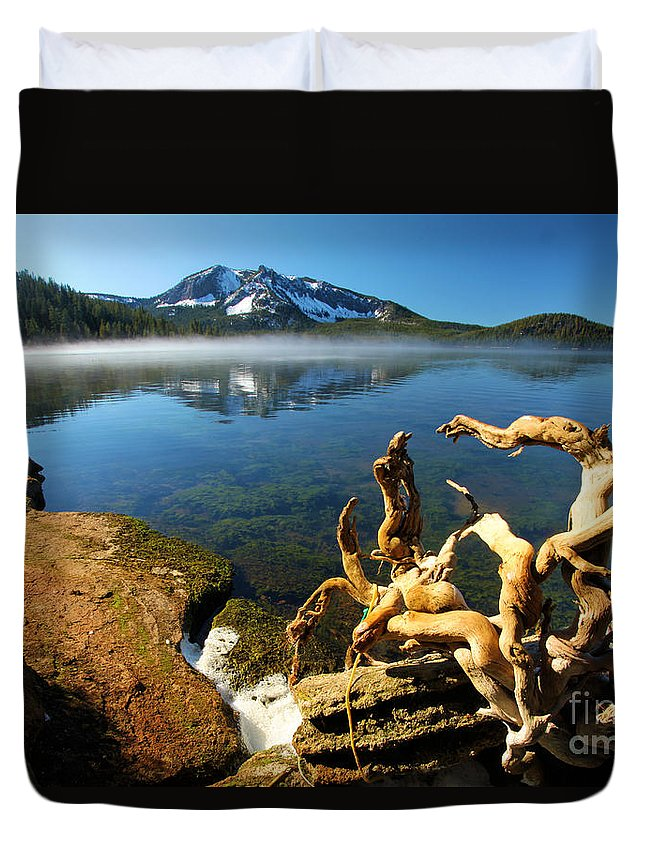Newbery National Volcanic Monument Duvet Cover featuring the photograph Twisted On The Shore by Adam Jewell