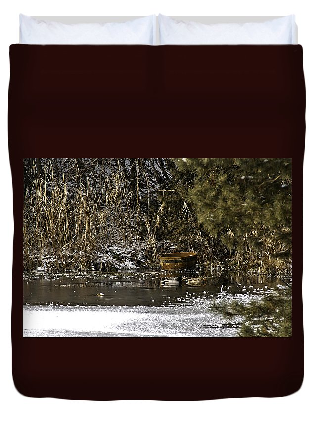 Usa Duvet Cover featuring the photograph Two Ducks And A Tub by LeeAnn McLaneGoetz McLaneGoetzStudioLLCcom