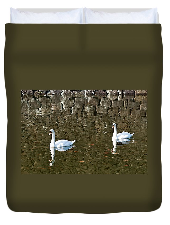 Animals Duvet Cover featuring the photograph Two Swan Floating On A Pond by U Schade