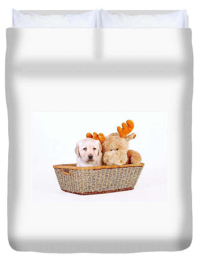 Animal Duvet Cover featuring the photograph Two Toys by Waldek Dabrowski