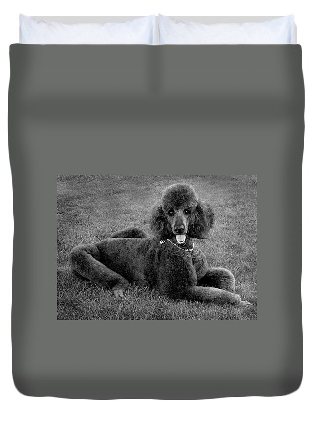 Duvet Cover featuring the photograph Tyler In Black And White by Burney Lieberman