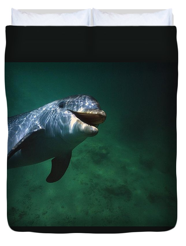 Outdoors Duvet Cover featuring the photograph Underwater Close-up Of Smiling by Natural Selection Craig Tuttle