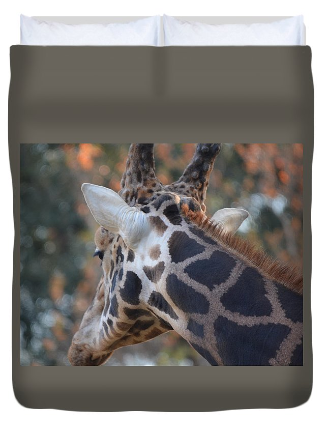 Giraffe Duvet Cover featuring the photograph Up Close And Personal by Maggy Marsh