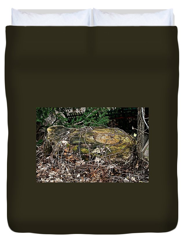 Tree Trunk Duvet Cover featuring the photograph Urban Decay by Susan Herber
