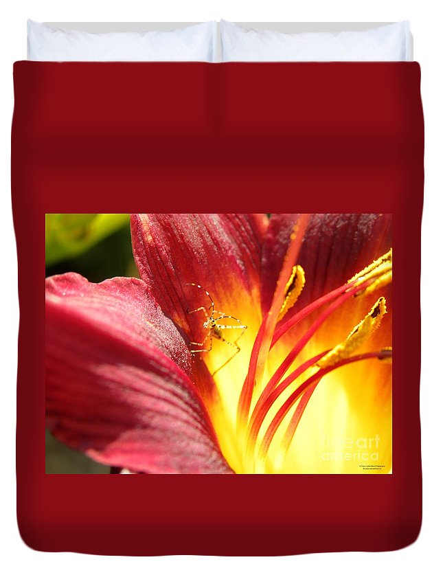 Lily Duvet Cover featuring the photograph Usual Visitor by Tisha Clinkenbeard