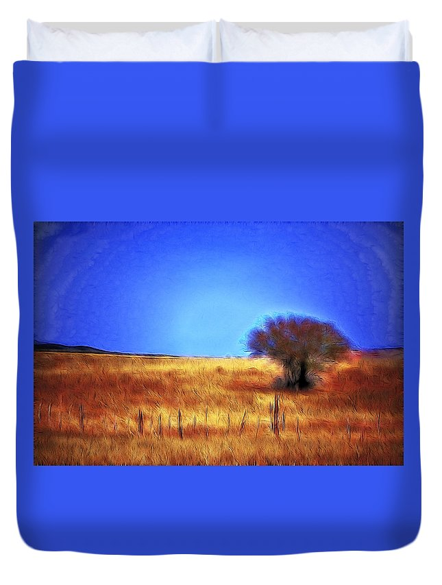 Fine Art Duvet Cover featuring the photograph Valley San Carlos Arizona by Donna Greene