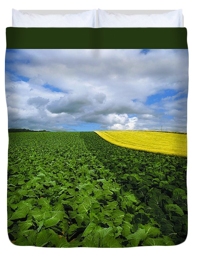 Countryside Duvet Cover featuring the photograph Vegetables, Cabbages by The Irish Image Collection