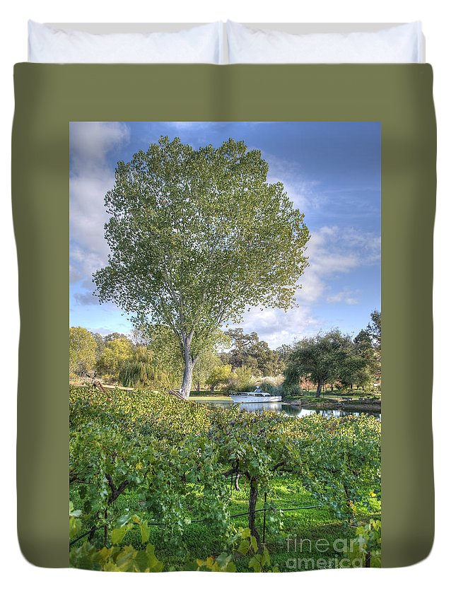 Amador County Duvet Cover featuring the photograph Vines And Trees by Diego Re