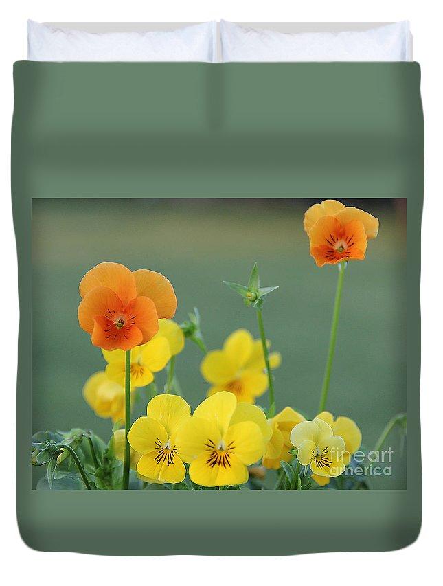 Flowers Duvet Cover featuring the photograph Violas by Jack Schultz