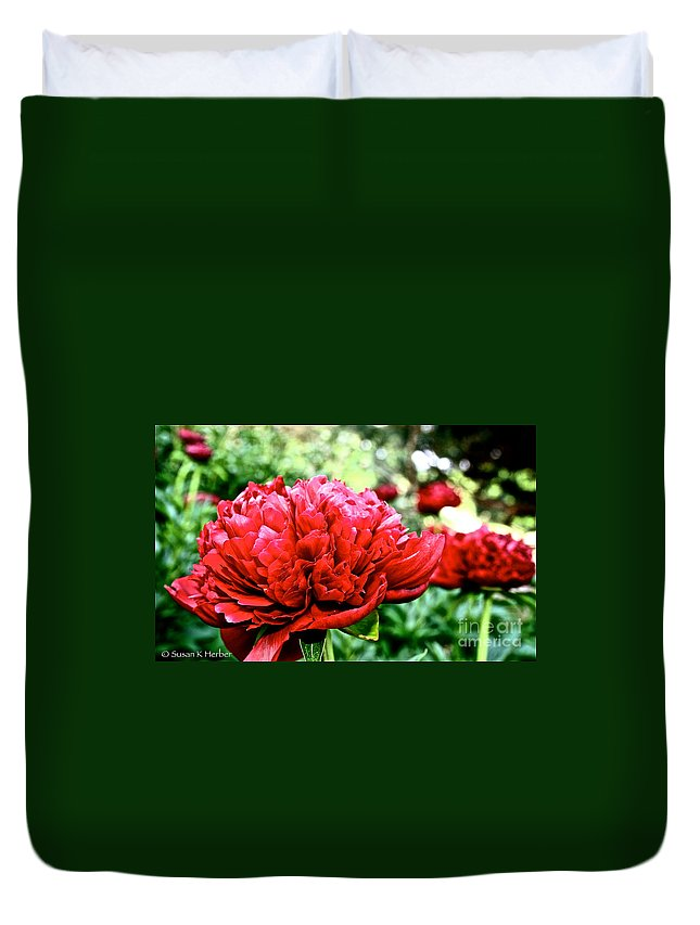 Plant Duvet Cover featuring the photograph Vivid Peonies by Susan Herber