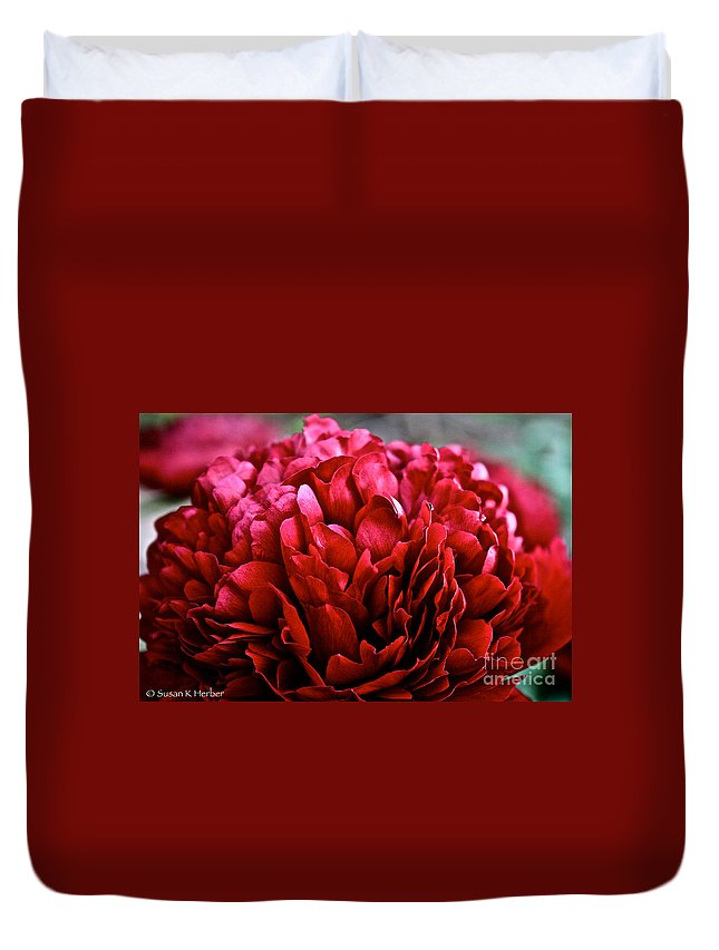 Plant Duvet Cover featuring the photograph Vivid Red by Susan Herber