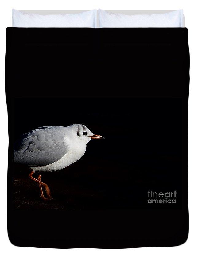 Bird Duvet Cover featuring the photograph Walking Bird by Mats Silvan