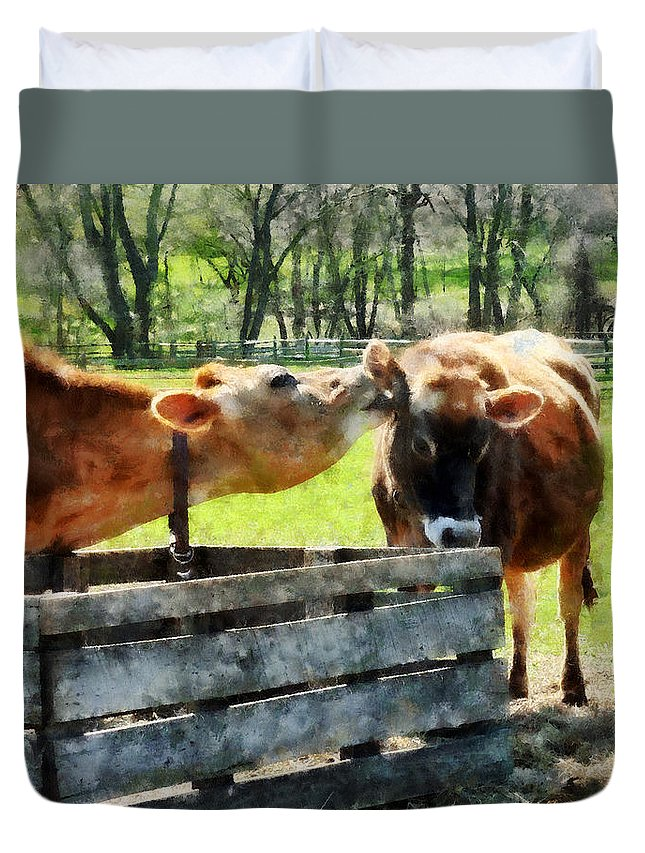 Cow Duvet Cover featuring the photograph Want To Hear A Secret by Susan Savad