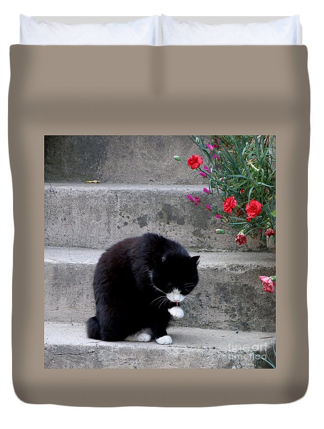 Cat Duvet Cover featuring the photograph Washing Up by Lainie Wrightson